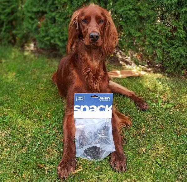 Suszony jeleń - przysmaki dla psów