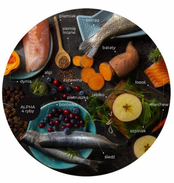 LINIA ALPHA 4 ryby - łosoś | pstrąg | plamiak | śledź
