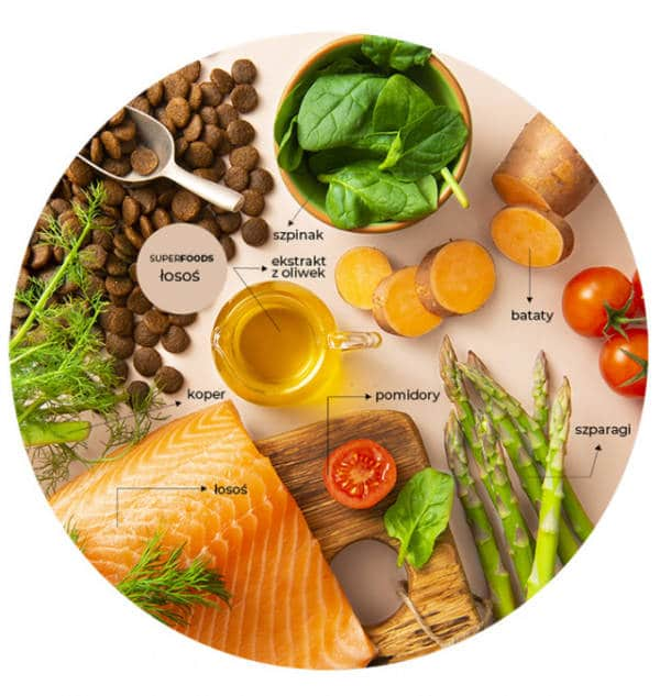 LINIA SUPERFOODS - łosoś | szpinak | koper | szparagi | fenkuł | pomidor