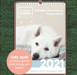 Kalendarz charytatywny 2021